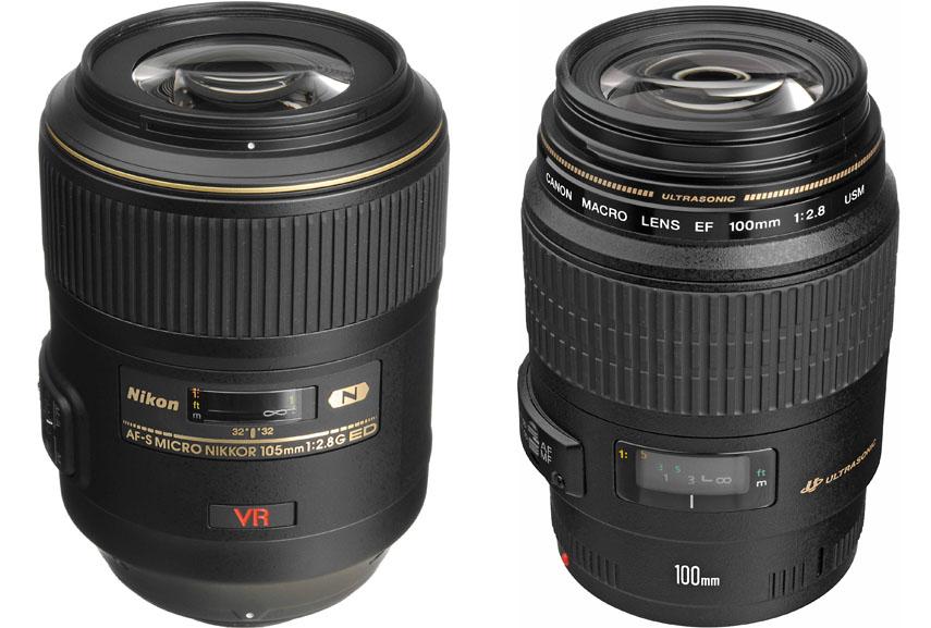 shoot macro photos with sharp focus using just canon macro lens the easy way