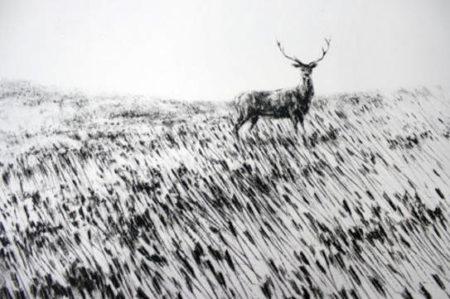 Pejac-Meadow-2015
