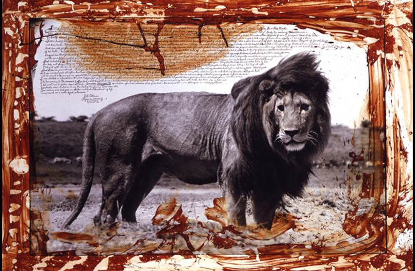 Peter Beard - Excerpt from a diary edition home policy news sign mick