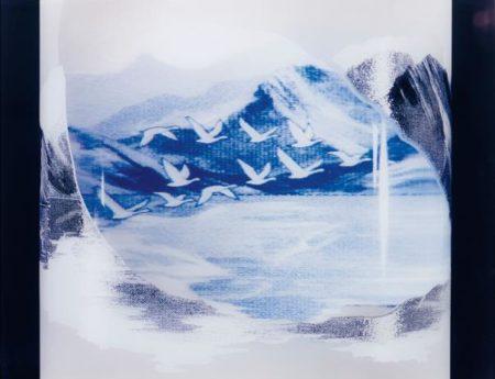Untitled (Grey Goose)-1998