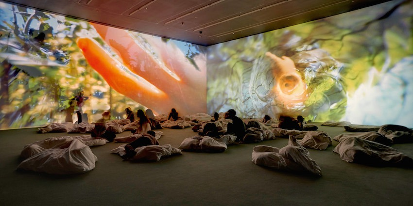 Pipilotti Rist - channel arts on view in news