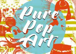 pure pop art exhibition american museum andy 2014 2013 kaufman steve warhol work