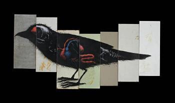 ROA-Sparrow-2010