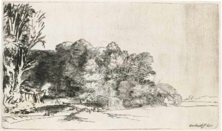 Rembrandt van Rijn-Clump Of Trees With A Vista-1652