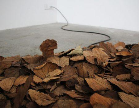 First Solo Show of Renata De Bonis Art in Italy Hosted by Giorgio Galotti Gallery