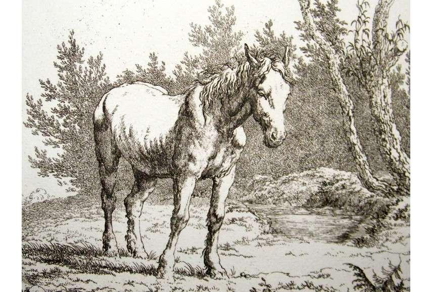 Robert Hills  - Horses, 1801 - Image via albion-printscom