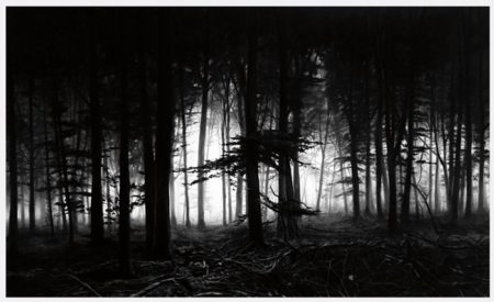 Robert Longo-Forest of Doxa-2014