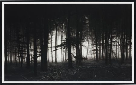 Robert Longo-Untitled (Forest of Doxa)-2014