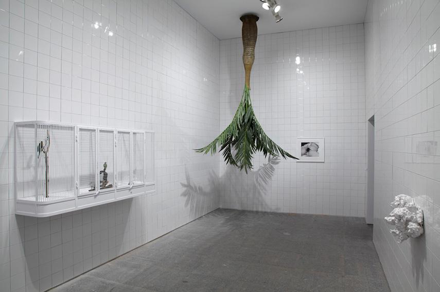 Rosemarie Trockel - Installation View untitled 2012
