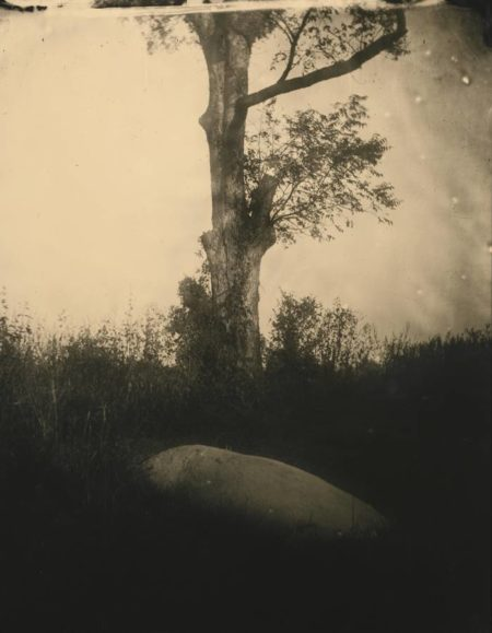 Sally Mann-Untitled (Deep South #05)-1998