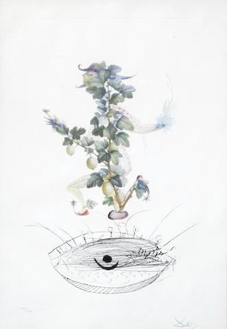 Salvador Dali-Reverence du groseillier-1970