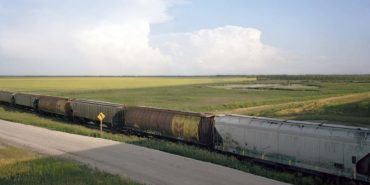 Scott Conarroe - Canola Train, Manitoba, detail (By Rail series), 2008