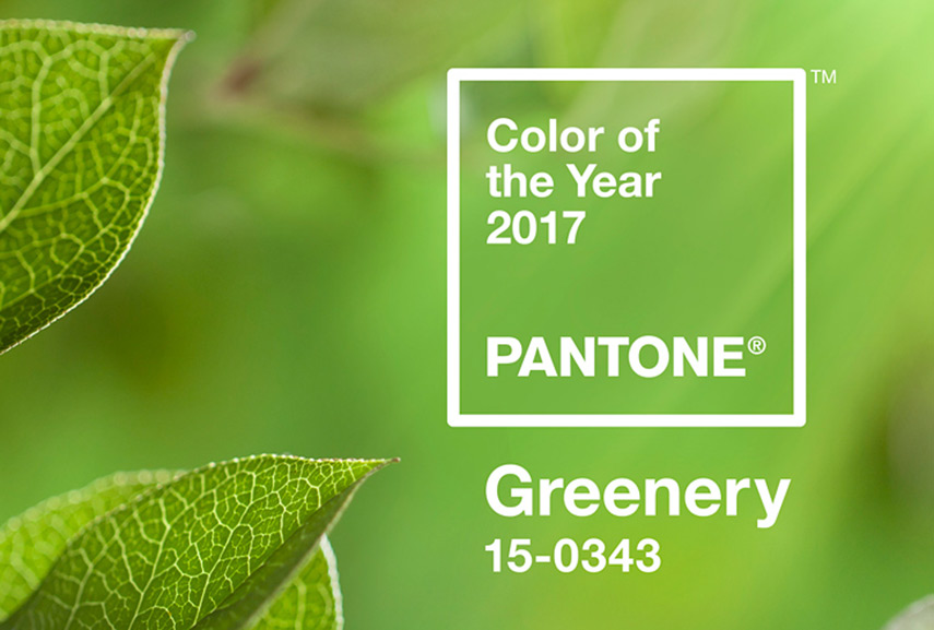 green home gives a sense of balance, growth and health. white color used with pink and gray in the home is better suited than green. green people are best. green color as symbol of green nature and theme of green growth. green