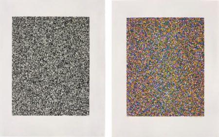 Tauba Auerbach-50:50 Random (Fine); A Half Times A Half Times A Half (Coarse)-2008