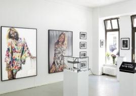 vermibus exhibition