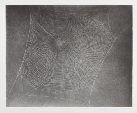 Vija Celmins-Untitled (Web 4)-2002