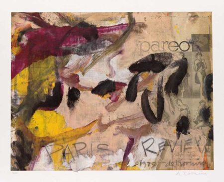 Willem de Kooning-Paris Review-1979