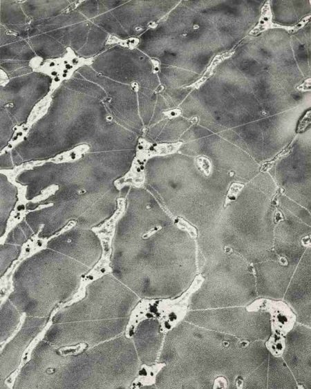 William Garnett-Animal Tracks On Dry Lake-1955