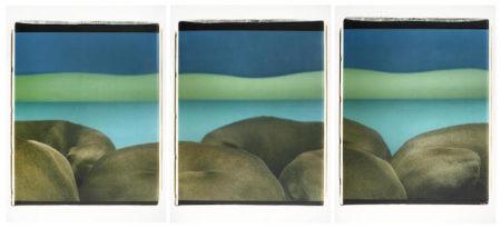 William Wegman-Lake Shore-1999