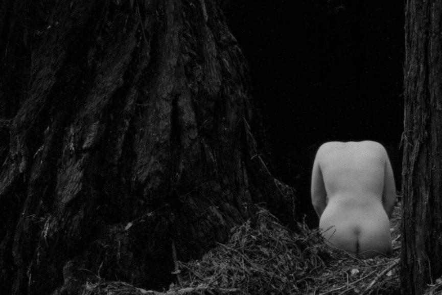 Resultado de imagen para nudes masters of photography