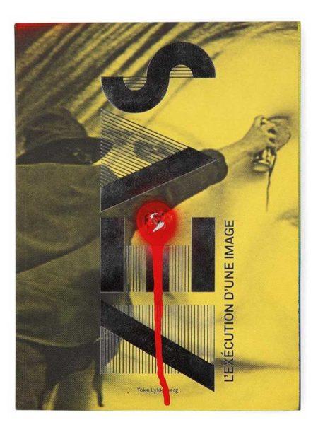 Zevs-L'execution d'une image-2014