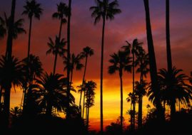 california via homesliceappcom