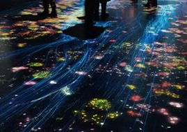 video blog of the japanese time forest installation within museum space in singapore - teamLAB Japan