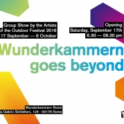Wunderkammern goes beyond