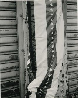 Andy Warhol, Photograph of a Stars and Stripes Banner, 1986
