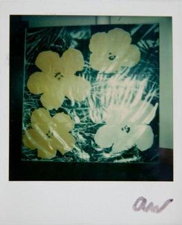 Andy Warhol, Flowers Silk Screen Print, Polaroid Photograph, 1976