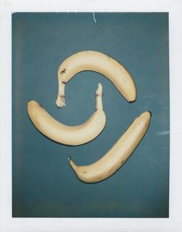 Polaroid Photograph of Bananas