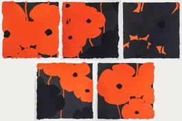 Poppies (Set of 5)