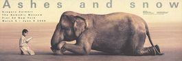 Boy Reading to Elephant