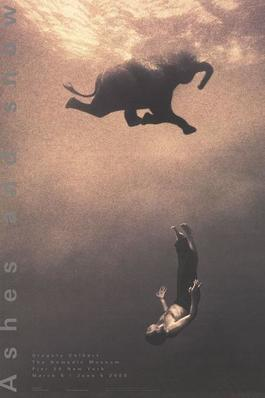 Gregory Swimming with Elephant, New York