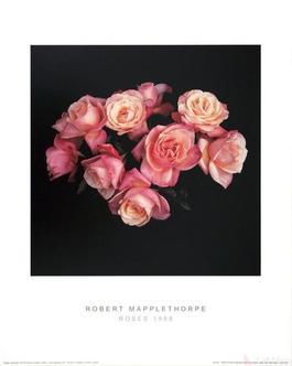 Roses (1988)