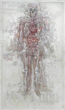 Human Anatomy (v.1.4)