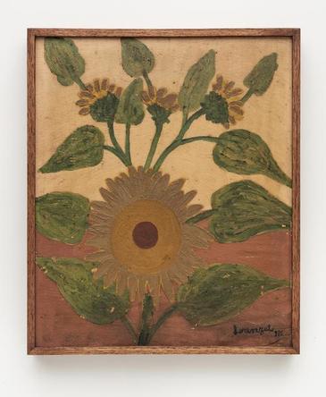 Girassol / Sunflower