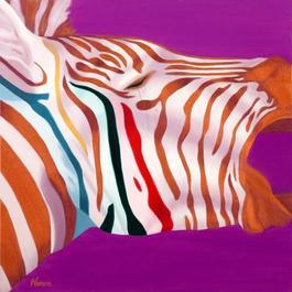 Zebra Il Rosso
