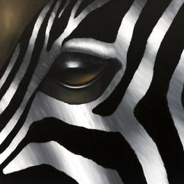 Zebra Marathon