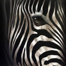 Zebra Reflets