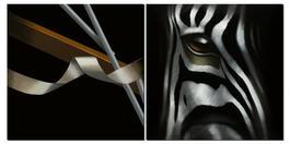 Zebra Rupture Diptyque