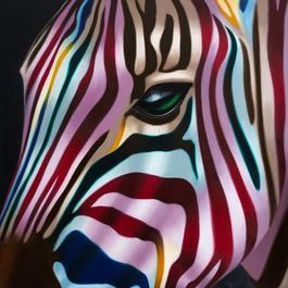 Zebra Present