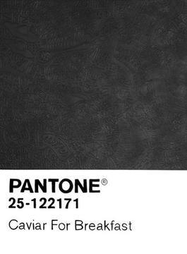 Birktone Series: Caviar for Breakfast (Pantone 25-122171)
