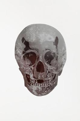 Silver Gloss/Chocolate Skull