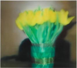 Tulips (P17)