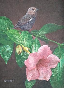 Bird Series 5
