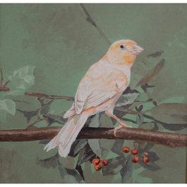 Bird series (2)