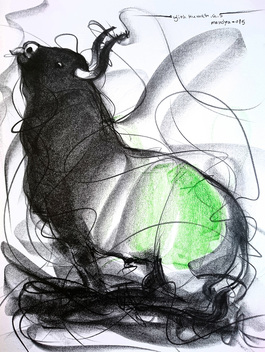 Bull Drawing - 600
