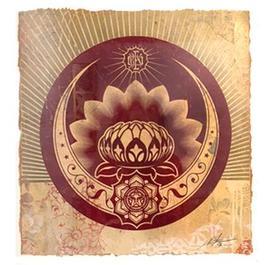 Lotus Crescent Study