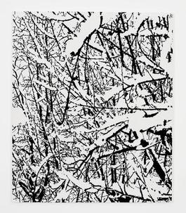 SNOW FOREST 007A